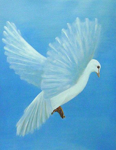 la colombe