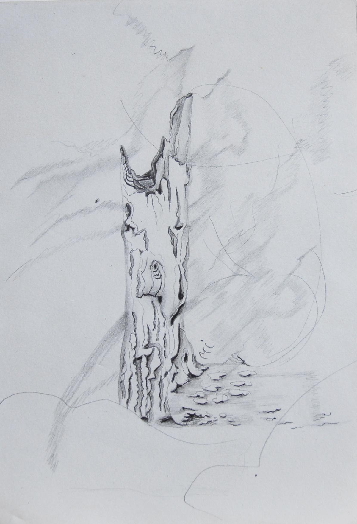 148 - L'ARBRE-CHEVAL crayon 14,7 x 21