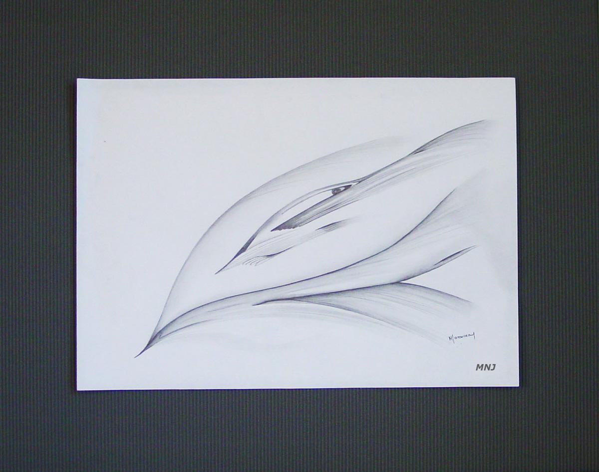 62 - REGARD - crayon de bois - 48,5-x-60,5