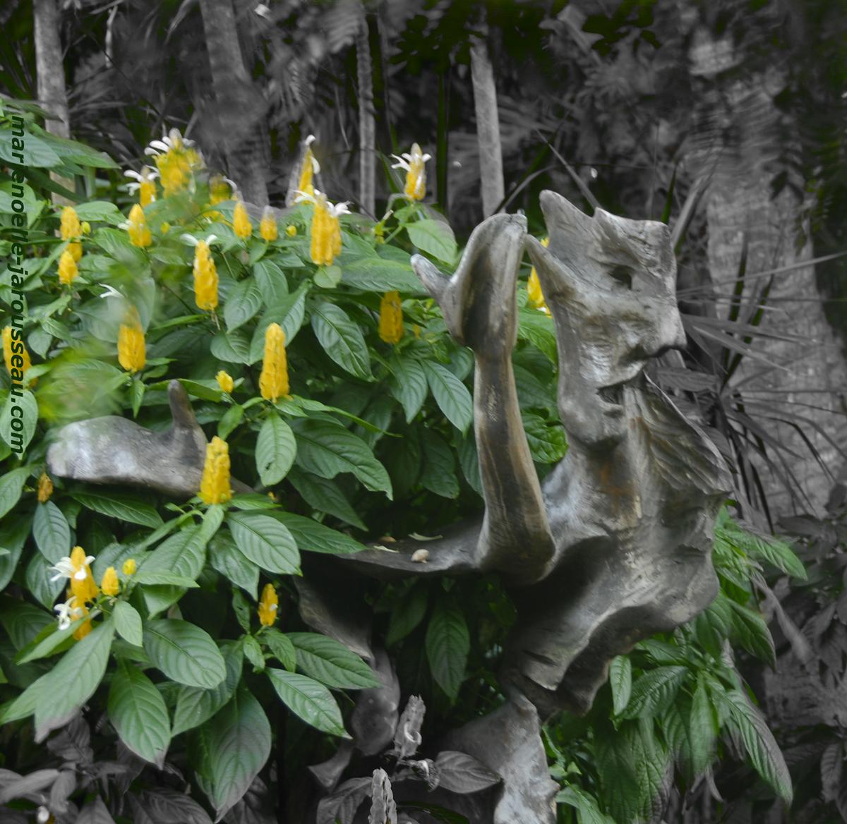Tête  de  bois  et  Fleurs