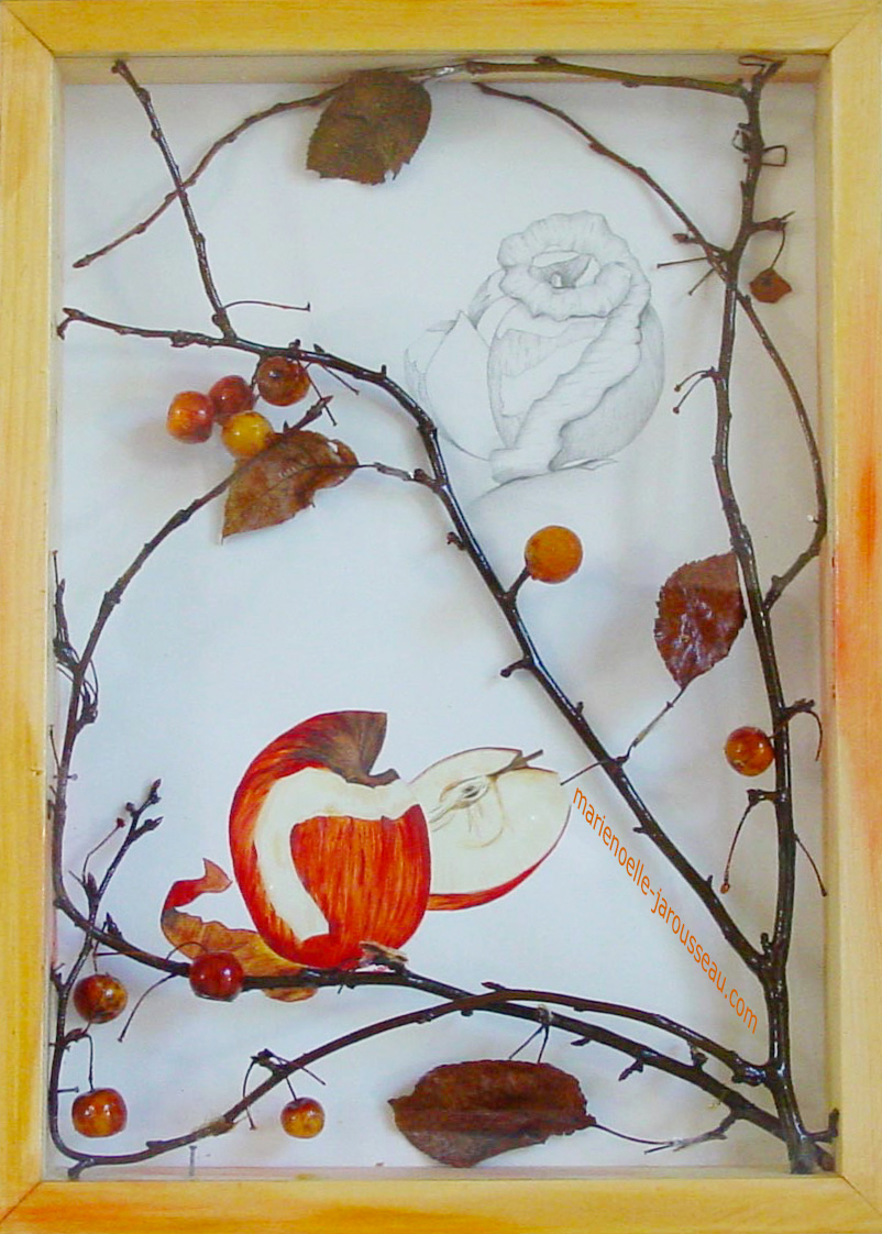 POMME - composition aquarelle & crayon - 33 x 45