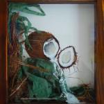 NOIX DE COCO -Composition & aquarelle - 27 x 30