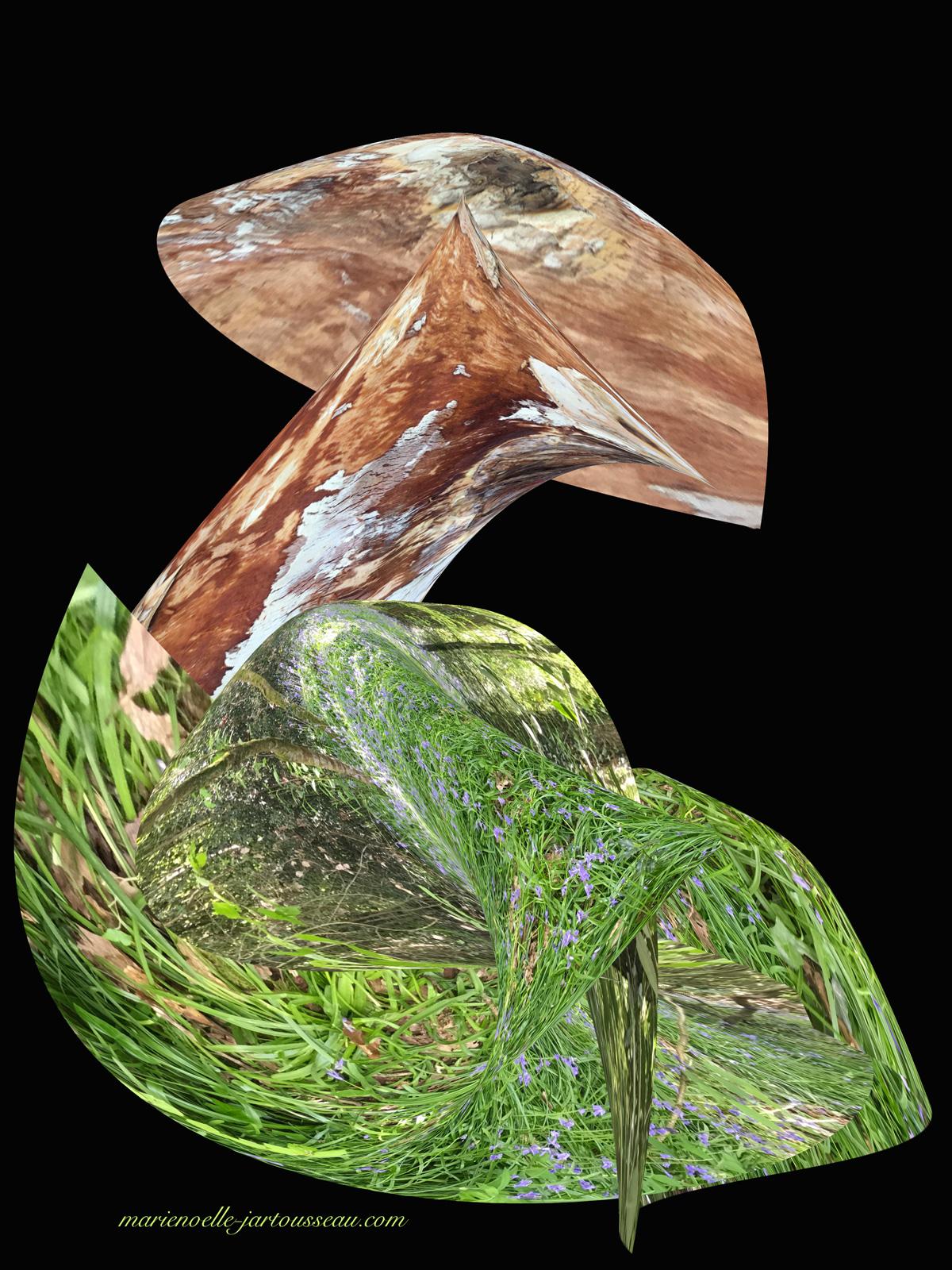 champignon dans son écrin de verdure
