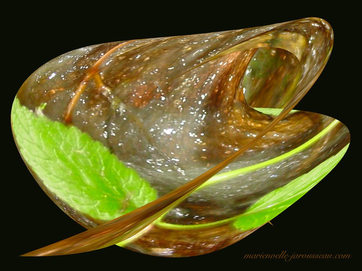 feuille verte d'eau