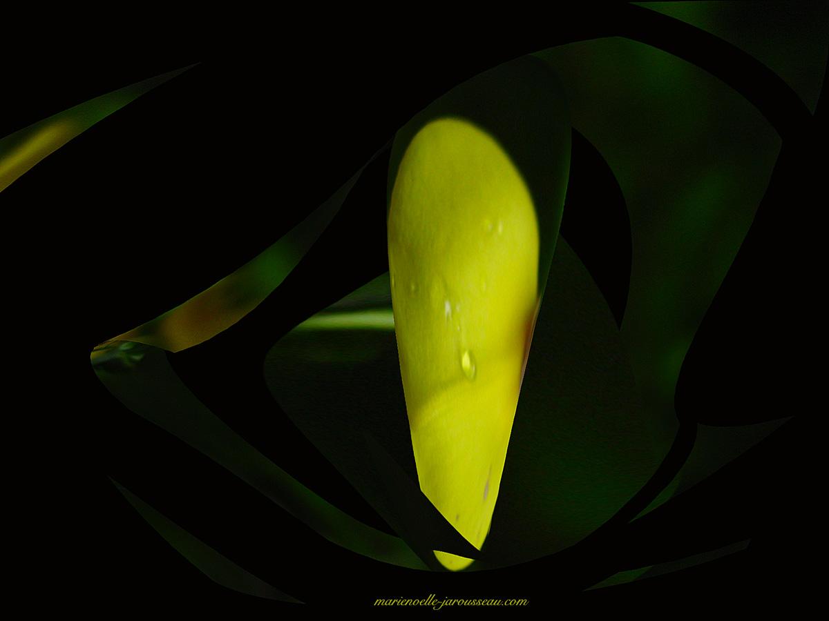 cône jaune